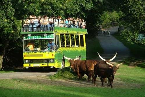 Tik dabar  galima keliauti Čekijoje už 647 Lt!